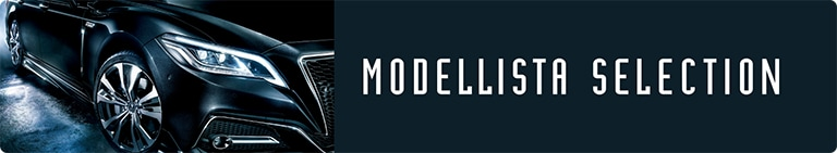 MODELLISTA SELECTION