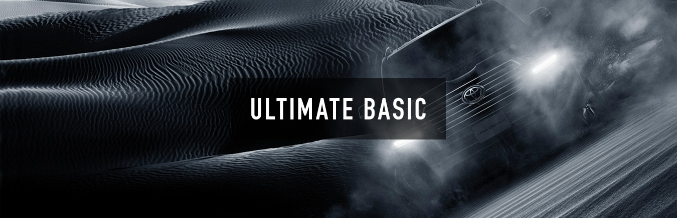 ULTIMATE BASIC