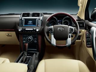 TZ-G。内装色はフラクセン。オプション装着車。