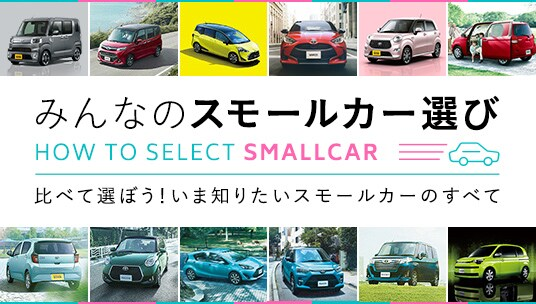 HOW TO SELECT SMALL CARS
